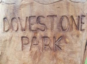Dovestone Park carving 2